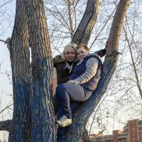 на дереве :: Виктория Большагина