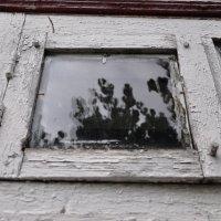 Серые окна :: Олеся Енина