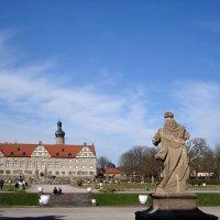 дворцовый парк :: Olga