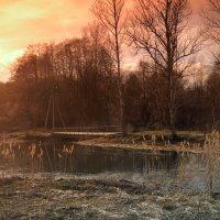 пейзаж :: Жанна Турлаева