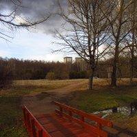 IMG_5464 - Переменчивый апрель :: Андрей Лукьянов