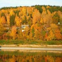 Сибирская осень :: Милешкин Владимир Алексеевич