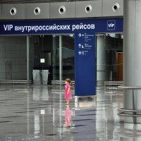 Паксик :: Алексей Михалев