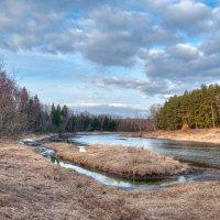 Весенние берега -солнечная сторона :: Андрей Куприянов