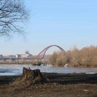 Бугринский мост :: Иван Янковский