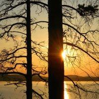 у озера :: Надежда Ерыкалина