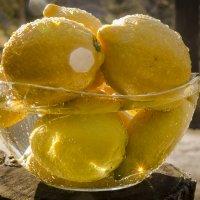 Солнце в лимонах :: аннушка