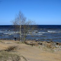 Ладожское озеро. :: ТАТЬЯНА (tatik)