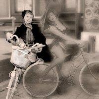 Как долго я гнала велосипед... :: Ирина Виниченко