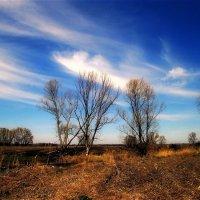 апрельский пейзаж... :: Назар