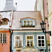 Зима в Риге :: SvetlanaScott .