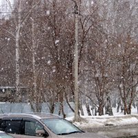 9 апреля ...идёт пушистый снег. :: Мила Бовкун