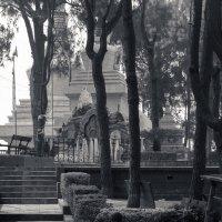парк Будды :: Светлана Фомина