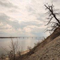 мост через Волгу :: Андрей ЕВСЕЕВ