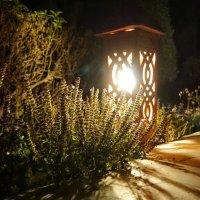 Свет в ночи :: Алексей Соминский