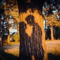 Love Story :: Виталий Миронюк