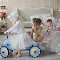 Свадебный переполох :: Ольга Новожилова