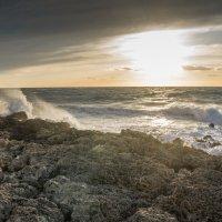Приближается шторм :: Александр Гапоненко