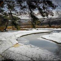 Весна на Содышке! :: Владимир Шошин