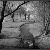 Река Милевка впадает в реку Пскову. :: Fededuard Винтанюк
