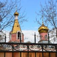 Храм Воскресения Христова. :: Oleg4618 Шутченко