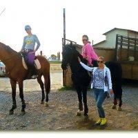 У каждого кто любит лошадей, Есть лошадь всех прекрасней и умней Не важно, то араб или рысак ... :: Людмила Богданова (Скачко)