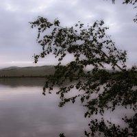 Вечер на озере :: Андрей Новосёлов