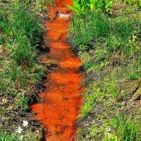 Красный Ручей в Ромберг- парке (Дортмунд) :: Александр Корчемный