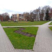 Литва, Друскининкай :: rimgis