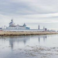 Бобренев монастырь :: Elena Ignatova