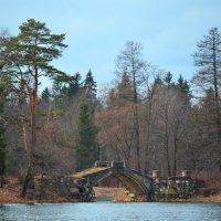 Весна в Гатчинском парке :: Наталья Левина
