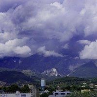 Liguria :: Mariia Klimenko