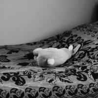 Одинокий заяц) :: Елена Бранова