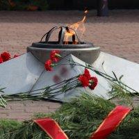 Вечный огонь-Вечная память! :: victor Lion