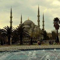 20.03.15 Голубая мечеть со стороны фонтана :: Борис Ржевский