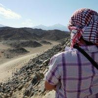 взгляд в пустыню :: валерий телепов
