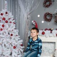 в ожидании праздника :: Anastasiya Vie
