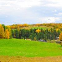 Осенняя пора,очей очарование... :: Екатерина Валейская