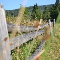 Старый забор :: Андрей Земcкий