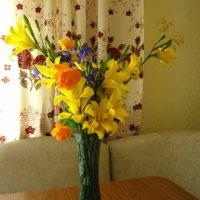 Полевые цветы :: Татьяна Бедник