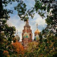 Лиственное сердце :: Николай Шлыков