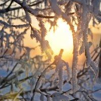 Солнце :: Николай Шлыков