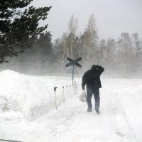хорошая погода :: Ната Казберук