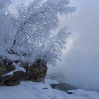 Зима :: Александр Бабарика