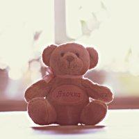 Медвед3 :: Yana Elistratova