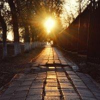Путь солнца :: Михаил Михайлов