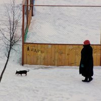 Дама с собачкой :: Людмила Минтюкова