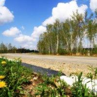 Дорога в аэропорт :: Нина Цинько