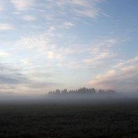 Один вечер в поле :: Алексей Каблуков