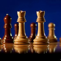 Шахматы 02 :: Алексей Валяев